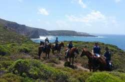 Candido avec 1200 chevaux